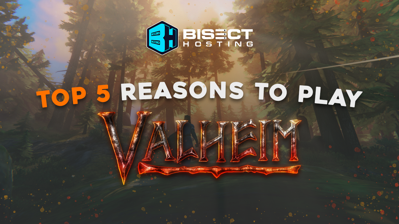 Top 5 Reasons to Play Valheim