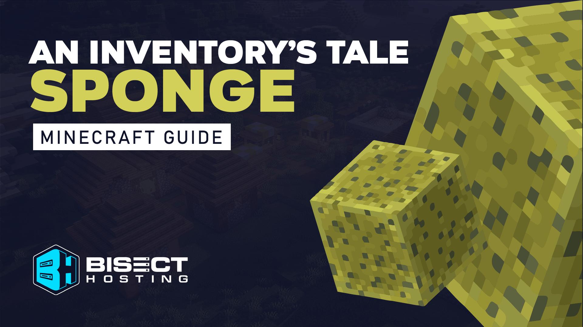 An Inventory's Tale: Sponge