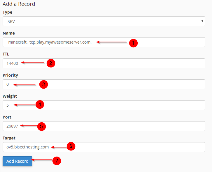 Creating SRV Record for Minecraft in cPanel - Knowledgebase