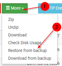 How to restore or download from daily backups